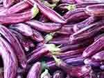 Eggplant Exports by Country